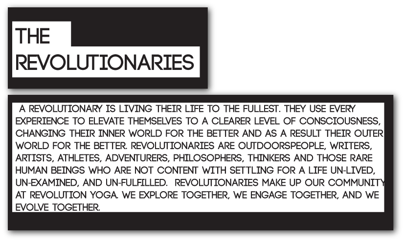 what is a revolutionary?